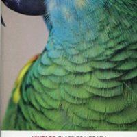 Treasure Island (Vintage Classic ) Ladybird